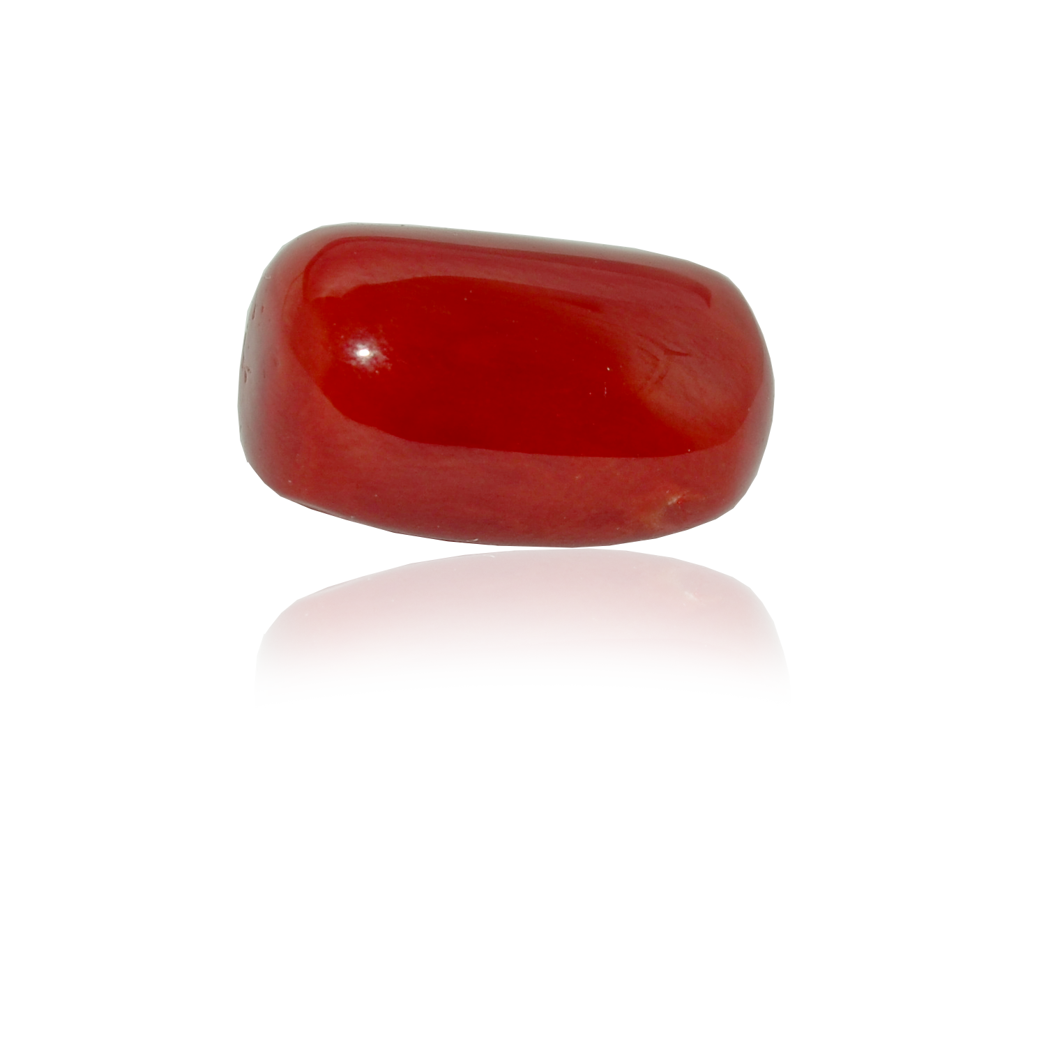 18.20 CARAT, OVAL CABOCHON CUT NATURAL RED CORAL